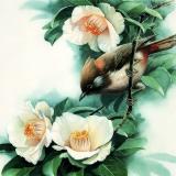 Птица Павлик