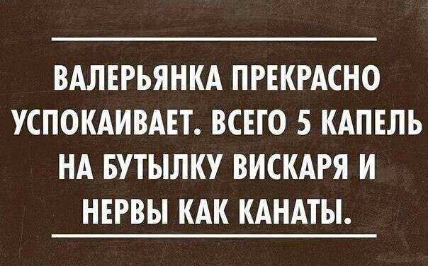 zTHQh_eJaBI.jpg