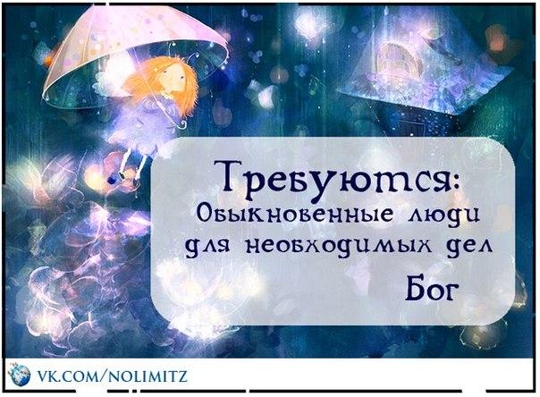 bog_2018-05-27.jpg