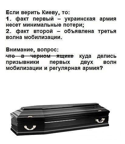 chernyjjawik.jpg