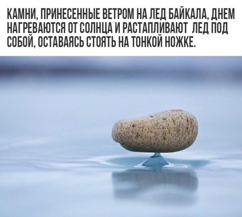 kamni.jpg