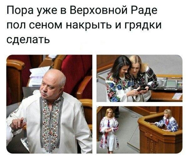 pol_2018-05-29.jpg
