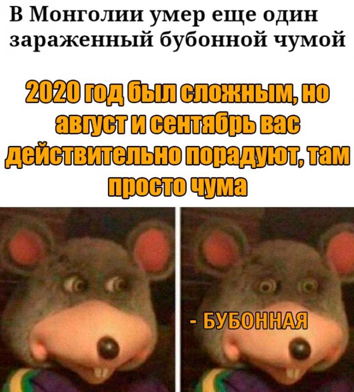 zd_2020-08-14.jpg