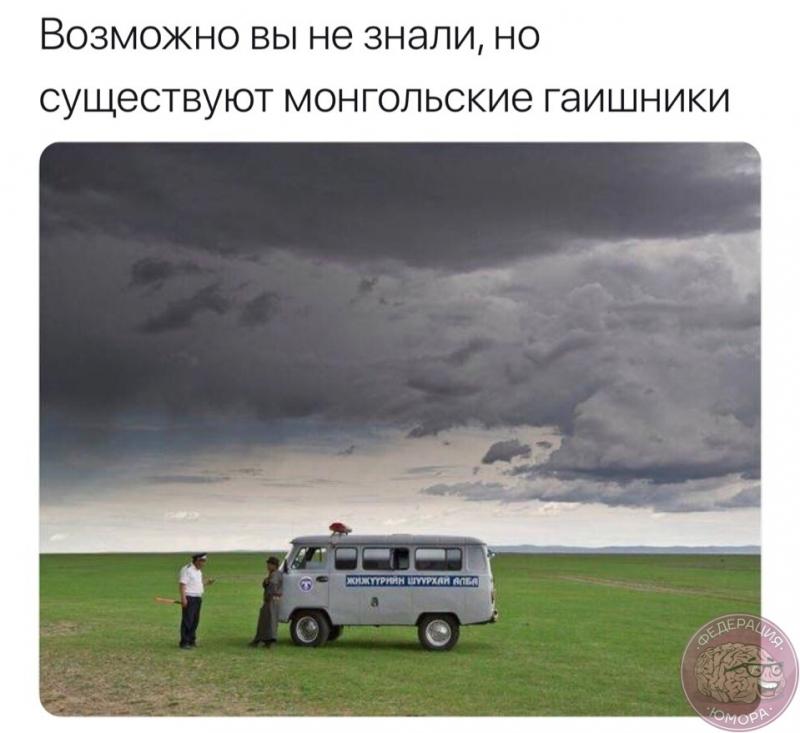 zz_2018-07-31.jpg