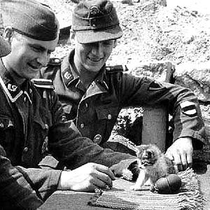 Nazisandakitten.jpg