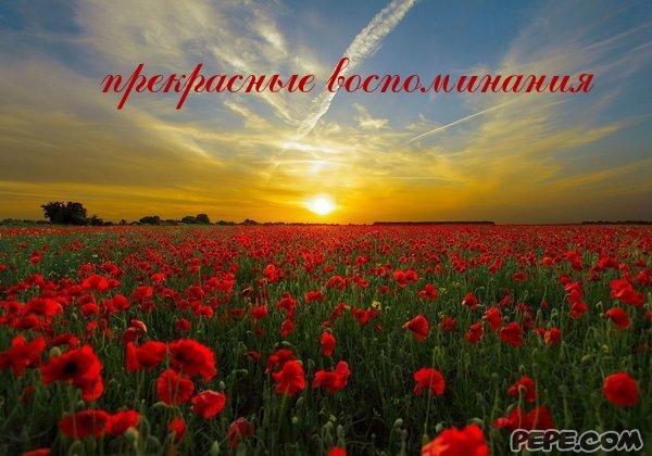 pryekrasniyye_vospominaniya_0.jpg