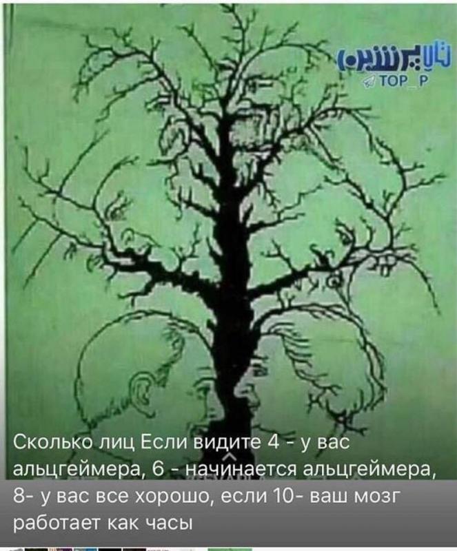 FB_IMG_1550843357025.jpg