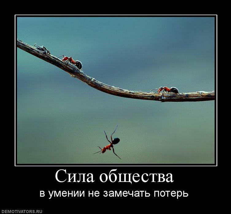 838690_sila-obschestva.jpg