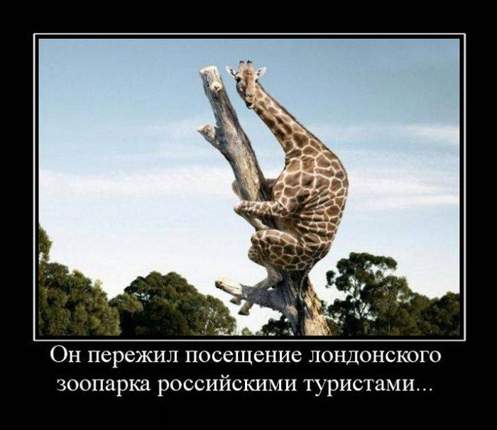 1387202909_demotivatori_samie_svejie-4.jpg