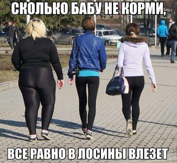 fbg.jpg