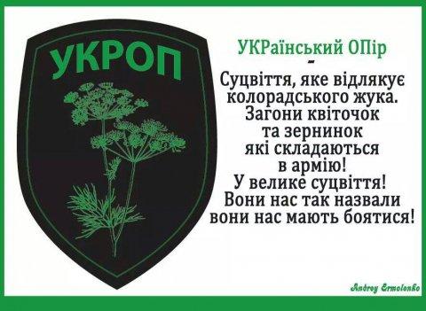 1410670023_ukrop-duren4_2015-01-09.jpg