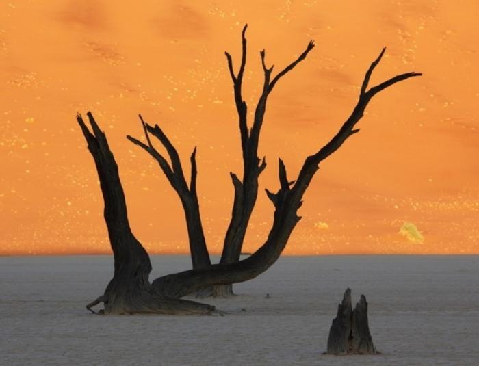 surreal-landscapes-2.jpg