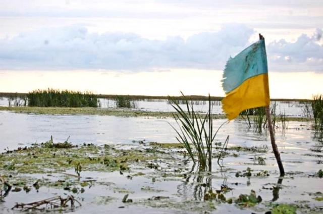 ukr-flag-boloto--768x5091_1.jpg