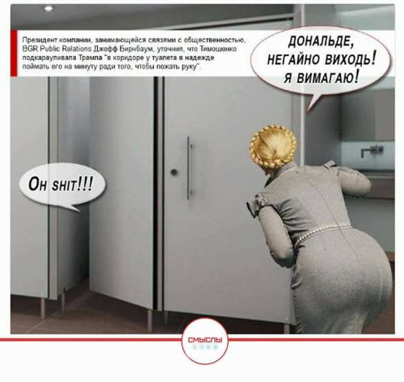 tualet_tramp_timoshenko_karikatura.jpg