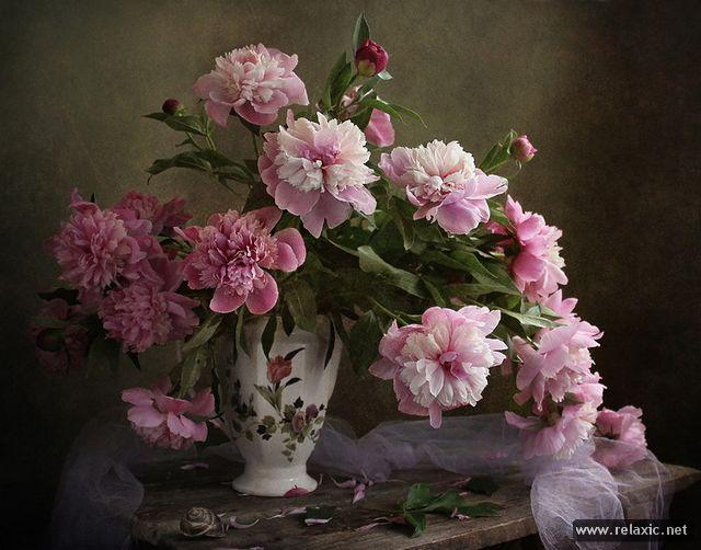 flowers_022.jpg